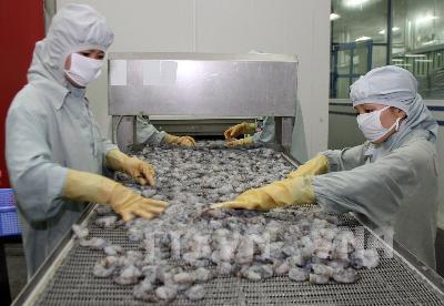 'Chập chững' xây dựng thương hiệu cho con tôm Việt Nam