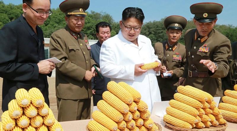 Ông Kim Jong-un nói kinh tế Triều Tiên tăng trưởng tốt - ảnh 1