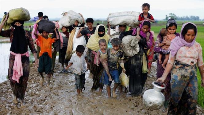 nguoi rohingya chay nan sang bangladesh reuters
